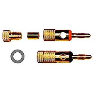 Thender 51-001C Coppia Spine a Banana Placcate Oro Pin con Molla a Microlamine Rotativa
