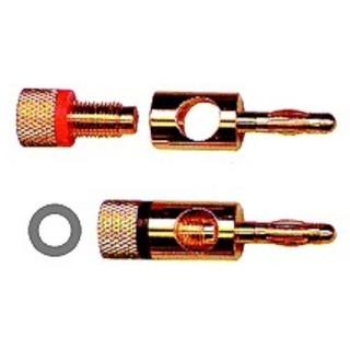 Thender 51-006C Coppia Spine a Banana Placcate Oro Pin con Molla a Microlamine Rotativa